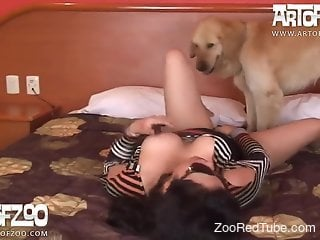 Perfect girl is sucking a juicy dog cock in amateur dog porn
