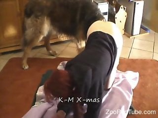 Skinny young chick and her big dog have awesome bestiality sex