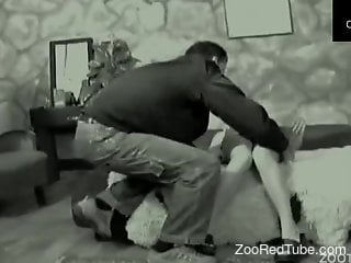 Black and white zoophilic porn action with a dick-swallowing brunette