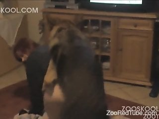 The hottest doggy hardly penetrated a big-bottomed zoophile slut