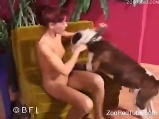 Redhead babe gets hardly penetrated by big and dark doberman