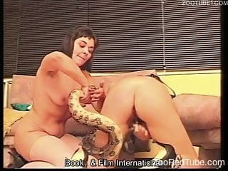 Crazy exotic bestiality action with two hotties and a python