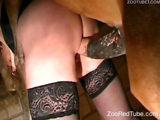 MILF in stockings gets dominated by a stallion