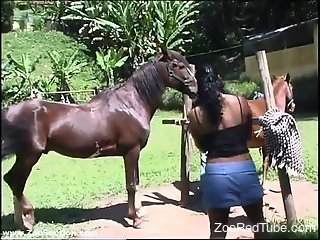 Outdoor blowjob from a kinky, horse-loving Latina