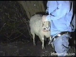 Denim-clad stud fucking a sheep's throat on camera