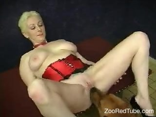 Horny MILF getting spit-roasted by a dog and her hubby