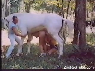 Dark-haired babe spit-roasted in a vid with a horse