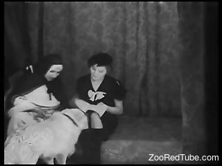 Nuns try their first zoophilia in a lesbian show
