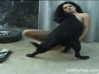Latina beauty letting this dog ravage her eager cunt
