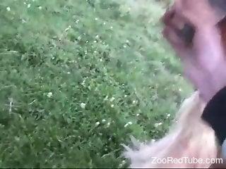 Handjob scene featuring a very well-endowed animal