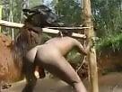 Zoo Porno Boom