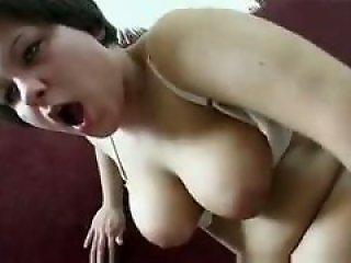 XNXX Zoo porn
